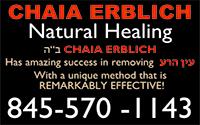 Chaia Erblich Cover Box copy